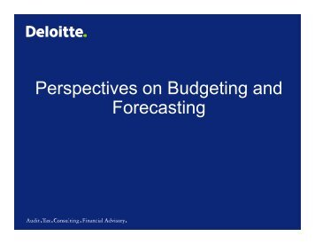 Perspectives on Budgeting and Forecasting - Financial Executives ...