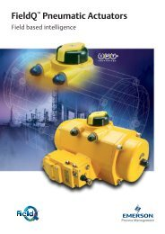 FieldQ Pneumatic Actuators - Fluid Control Services