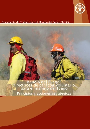 Manejo del Fuego - The Global Fire Monitoring Center