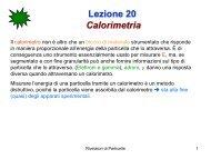 Lezione 20 Calorimetri - Fisica