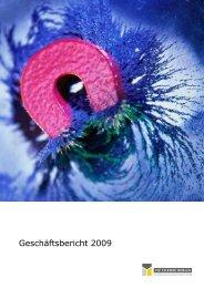 Geschäftsbericht 2009 - FIZ Chemie Berlin