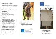 Informationen zu den Nisthilfen für Fledermäuse - Fledermaus-Bayern
