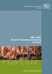25 Jahre Fledermausmonitoring in Bayern - Fledermaus-Bayern
