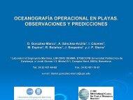oceanografía operacional en playas. observaciones y ... - FLOODsite