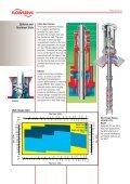 Pump Division - Flowserve - Page 6