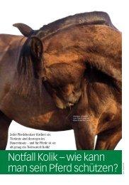 gibt es den Artikel als PDF-Download! - Rheinlands Reiter+Pferde