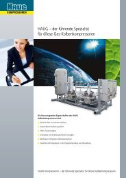 Kernkompetenzen.pdf - Haug Kompressoren AG