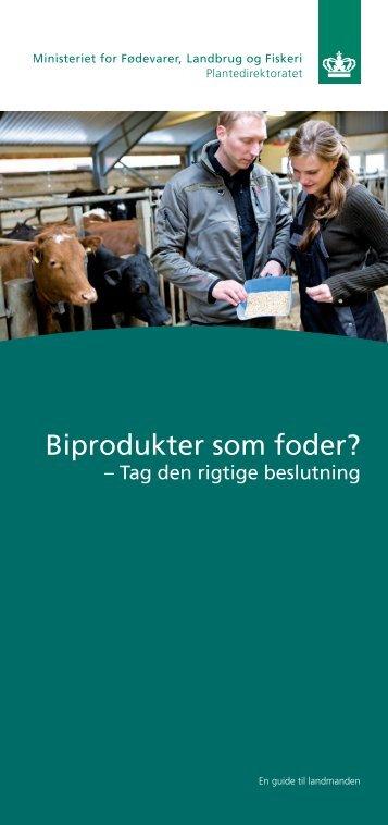 Biprodukter som foder? - tag den rigtige beslutning. (pdf)