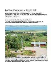Dansk Energi-Net, kontrakt nr. 6604-001-35 B