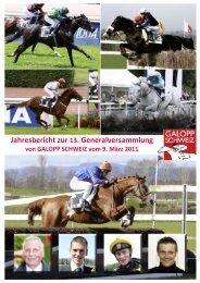 Jahresbericht 2010 - Iena