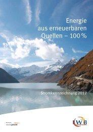 PDF 129 KB - IWB Industrielle Werke Basel