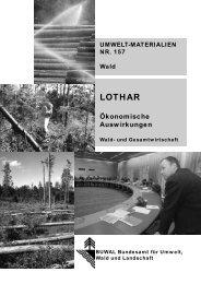 LOTHAR. Ökonomische Auswirkungen. Wald - BAFU