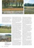 Artikel lesen - Pfrommer & Roeder - Seite 4