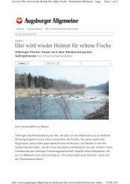 Iller wird wieder Heimat für seltene Fische - Fischereiverband ...