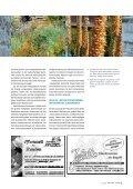 Wohngarten in Silber und Orange - die Bäumler - Seite 4