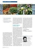Wohngarten in Silber und Orange - die Bäumler - Seite 5