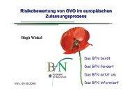 Birgit Winkel: Risk Assessment - Nabu