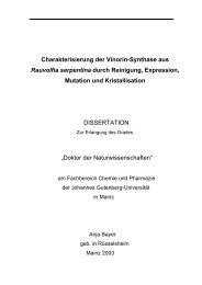 Charakterisierung der Vinorin-Synthase aus Rauvolfia serpentina ...