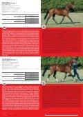 katalog koni - Polski Związek Hodowców Koni - Page 6