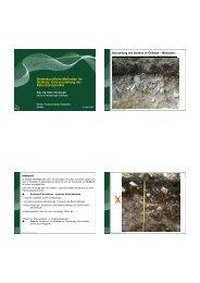Bodenkundliche Methoden im Gelände, Kurzvorstellung der ... - BFW