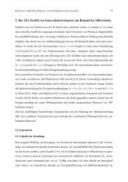 5. Der 2E1-Zerfall von Innerschalenvakanzen am Beispiel des ...