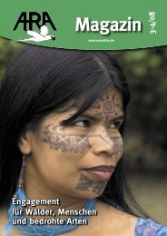 ARA Magazin 3-08.indd