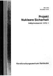 Projekt Nukleare Sicherheit - Bibliothek