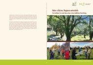als PDF-Download erhältlich. - Deutscher Verband für ...