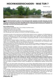 HOCHWASSERSCHADEN - WAS TUN ? - Schreiter & Kroll GmbH