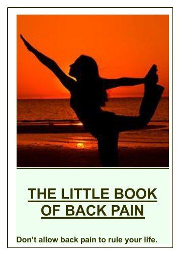 THE LITTLE BOOK OF BACK PAIN - DEAN AMORY