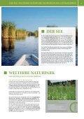 pannonische freizeit 2013 - Illmitz - Page 3