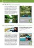 pannonische freizeit 2013 - Illmitz - Page 6