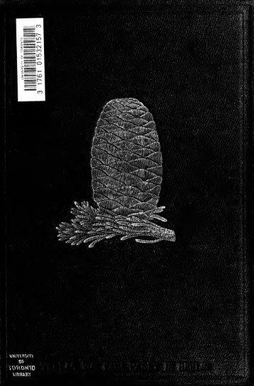 Handbuch der Nadelholzkunde; Systematik, Beschreibung ...
