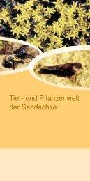 Tier- und Pflanzenwelt der Sandachse - VGN