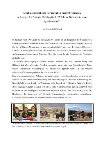 Bericht Henriette Schubert, Volontärin 2011 - Manfred Hermsen ...