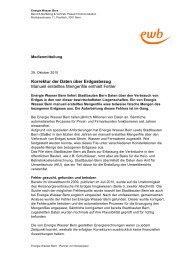 Korrektur der Daten über Erdgasbezug (PDF) - Energie Wasser Bern