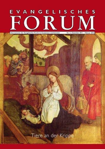 Forum Nr. 5/11 - Evangelische Kirche im Fürstentum Liechtenstein