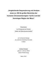 """""""Vergleichende Sequenzierung und Analyse eines ca. 250 kb ..."""