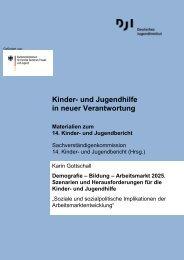 Kinder- und Jugendhilfe in neuer Verantwortung - Deutsches ...