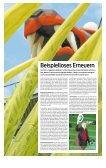 Bregenzer Festspiele 2013 - Vorarlberg Online - Seite 3