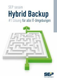 Microsoft - SEP - Backup, Restore & Disaster Recovery Software