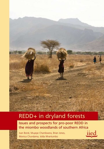 REDD+ in dryland forests - IIED - International Institute for ...