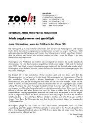 PANO 0208 Junge Hühnergänse und Tamandua - Zoo Zürich