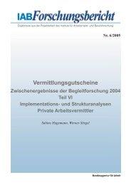 Zwischenergebnisse der Begleitforschung 2004 - Teil VI - IAB