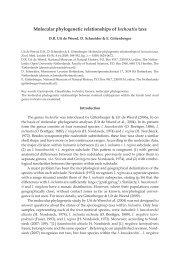 ZM82 589-592 Uit de Weerd et al.indd - Zoologische Mededelingen
