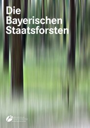 Download (PDF, 3.9 Mb) - Bayerische Staatsforsten