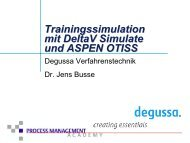 Leistungsspektrum Trainingssimulation bei Degussa ...
