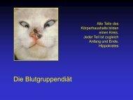 Die Blutgruppendiät, pdf, 446 KB - Ever.ch