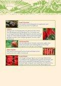 Paprika- und Chiliraritäten - Ja! Natürlich - Seite 4
