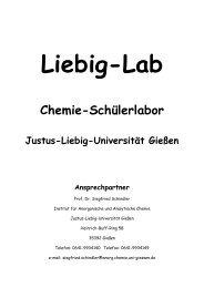 Chemie-Schülerlabor - Justus-Liebig-Universität Gießen